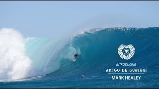 Download Introducing Amigo de Guayakí, Mark Healey Video