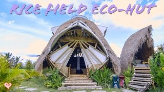 Download Incredible Bamboo Eco Hut Tour ♥ The Coolest Place We Have Stayed In Bali Yet Video