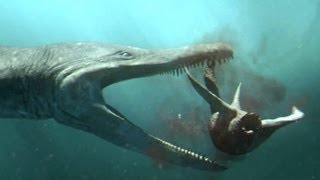 Download Predator X hunts in deep water - Planet Dinosaur - BBC Video