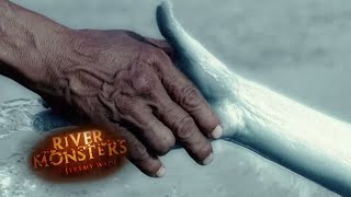 Download Mermaid Body Snatcher: Attack Story - River Monsters Video