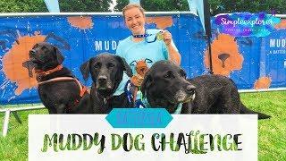 Download RUNNING | BATTERSEA MUDDY DOG CHALLENGE - NOTTINGHAM 2018 Video