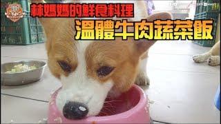 Download [連環泡]林媽媽的鮮食料理~溫體牛肉蔬菜飯 Video