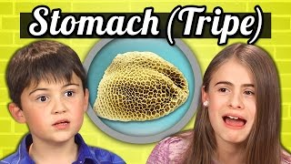 Download KIDS vs. FOOD - COW'S STOMACH (TRIPE) Video