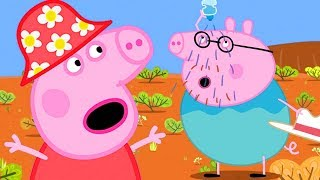 Download Peppa Pig Full Episodes - The Outback - Cartoons for Children Video
