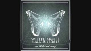 Download Ties of Grace - WHITE MOTH BLACK BUTTERFLY Video