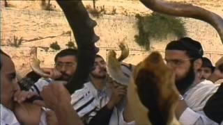 Download C'est pas sorcier -Religion 1 ″ Un Dieu, 3 religions″ Video