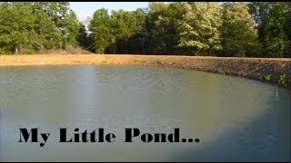 Download Pond Clearing & Stocking Hybrid Bream Video