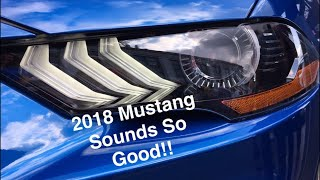 Download 2018 Ford Mustang GT Revs To Redline With Performance Exhaust!! Video