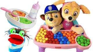 Download Video for Children - Paw Patrol Babies Skye Chase Video