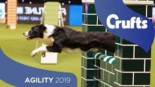 Download Agility - Championship Final | Crufts 2019 Video