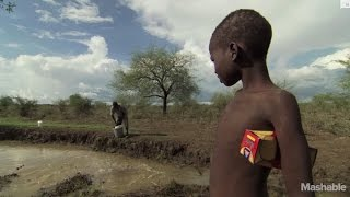 Download How Guinea worm disease went from 3 million cases to 126 | Mashable Video