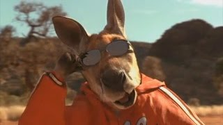 Download The entire Kangaroo Jack movie but it is just kangaroos Video