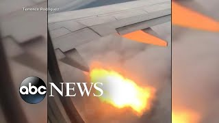 Download Plane passengers see flames after bird strike l ABC News Video