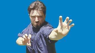 Download Kung Fu : Choy Li Fut - le Kung Fu de Dr Wong Video