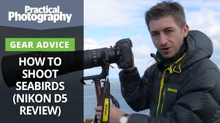 Download Photography tips - How to shoot seabirds (and Nikon D5 review) Video