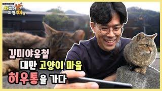 Download 고부해 In Taiwan 고양이들의 천국 대만 허우통을 가다 Video