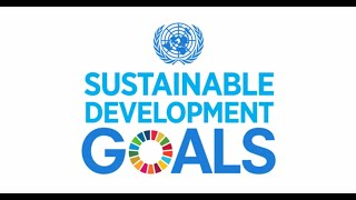 Download A Look at the Sustainable Development Goals Video