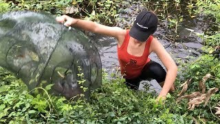 Download Believe This Fishing? You Won't Believe This Fish Trap Is REAL! Video