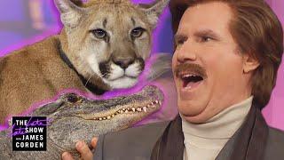 Download Ron Burgundy Meets a Cougar, Alligator & Skunk Video