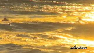 Download Gary Moore-The Prophet. Video