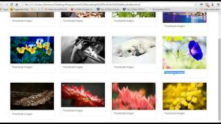 Download {How2Create} Bootstrap Responsive Portfolio Gallery, Zoom Effect, Image View With Use FancyBox Video