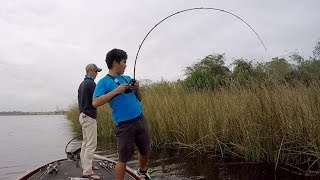 Download MY ROD'S GONNA SNAP!!! Fishing HEAVY Cover in Texas (ft. LakeForkGuy) Video
