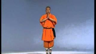 Download Cours de kung fu en ligne - Les pratiques de l'art martial Video