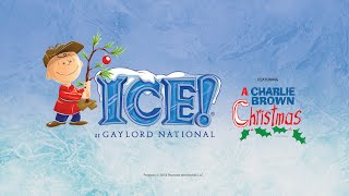 Download ICE! at Gaylord National Video