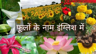 Download Flowers Name in English Video