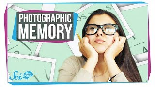 Download Does Photographic Memory Exist? Video