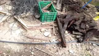 Download Matando Ratas capítulo 2 Video