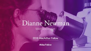 Download Microbiologist Dianne Newman | 2016 MacArthur Fellow Video