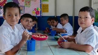 Download FAO 40 años en El Salvador Video