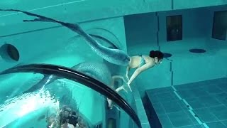 Download Mermaid Show In World's Deepest Pool Y-40 Video