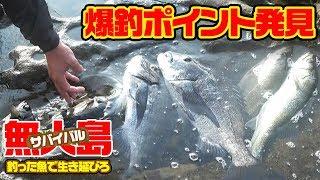 Download 【無人島2泊3日】釣った魚で生き延びろ‼#6 Video