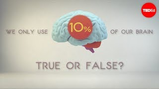 Download What percentage of your brain do you use? - Richard E. Cytowic Video