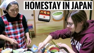Download MY JAPANESE HOMESTAY EXPERIENCE [Pt. 1] Video