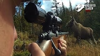 Download Hunting moose filmed with camera mounted on gun, Awesome killscene. Video