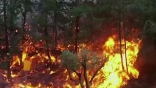 Download Tens of thousands flee wildfires in Israel Video