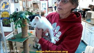 Download FFRC Double Adoption of Clay and Brenna on 1/12/2018 Video