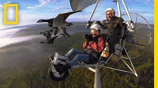 Download Soar Alongside Migrating Birds—and the Man Who Flies With Them | National Geographic Video