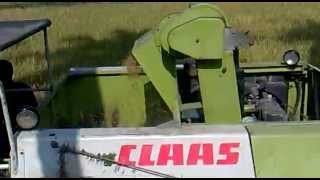 Download CROP TIGER 30 TERRA TRAC CLAAS harvesting Video