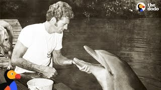 Download Former Dolphin Hunter Devotes His Life To Saving Dolphins | The Dodo Video