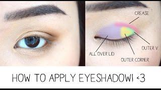 Download How to Apply Eyeshadow & Eye Anatomy! Video