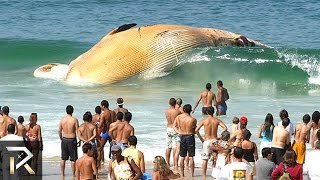 Download 10 Strangest Ocean Phenomena You Won't Believe! Video