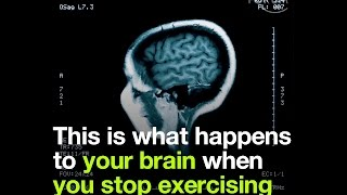Download This is what happens to your brain when you stop exercising Video