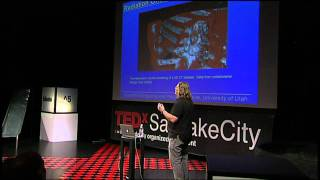 Download Visualizing large data sets: Chris Johnson at TEDxSaltLakeCity Video