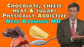 Download Chocolate, Cheese, Meat, and Sugar - Physically Addictive Video