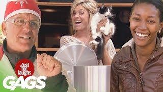 Download Best of Animal Pranks Vol. 2   Just For Laughs Compilation Video