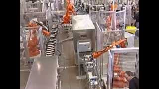 Download Desma Amir Automated Material Flow with Integrated Robots Video